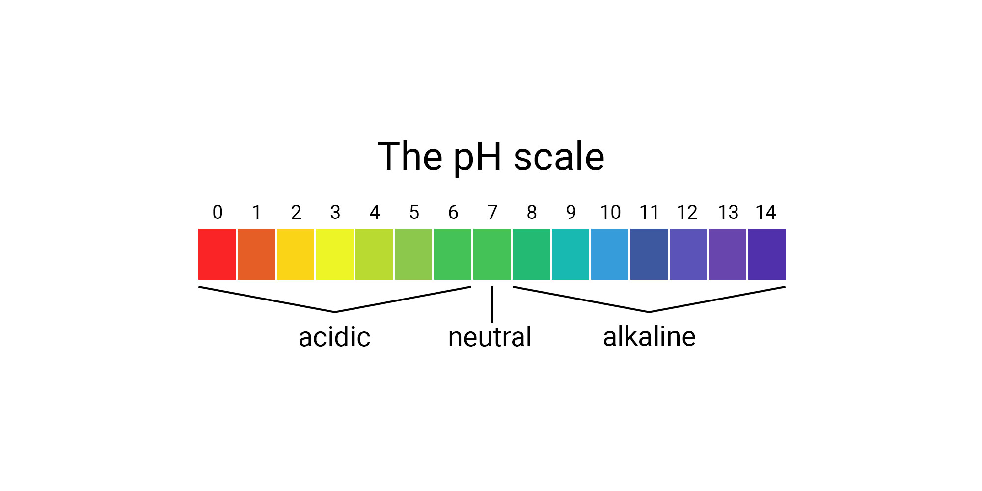 PH Level: Why Is This So Important?